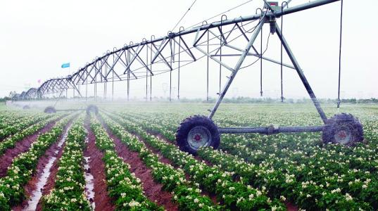 IRRIGATION VAVLE